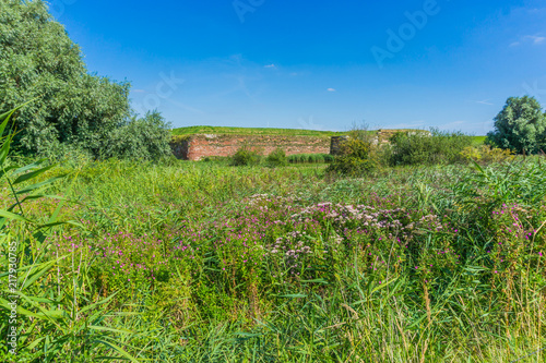 Foto op Canvas Pistache green beautiful countryside landscape