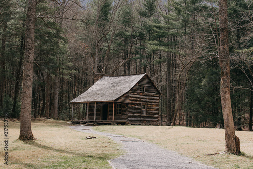 Fotografia cabin in the woods