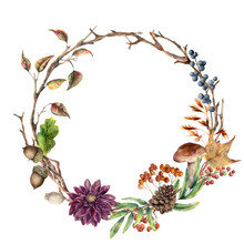 Watercolor Autumn Tree Branch And Flower Wreath. Hand Painted Wreath With Acorn, Mushroom, Cone, Berries And Leaves On White Background. Illustration For Design, Fabric Or Background.