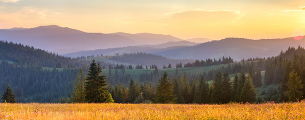Fototapeta Las Autumn panoramic landscape