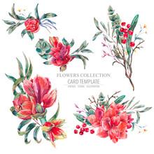 Vector Floral Set Of Red Flowe...