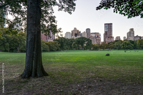 New York Central Park with Skyline View Sunset trees clouds