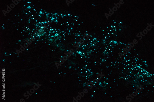 bioluminescence, glow worms in a dark cave Wallpaper Mural
