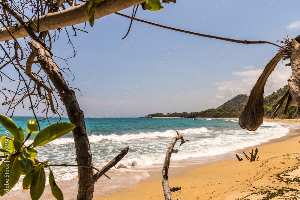 Fotografie, Obraz  A typical view in Tayrona National Park Colombia
