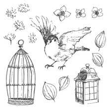 Romantic Vector Hand Drawn Collection Of Birds, Flowers, Gardeni