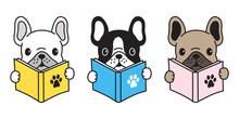 Dog Vector French Bulldog Icon Pug Logo  Cartoon Character Illustration Reading Book Doodle