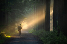 Person Standing In Sunlight In A Forest