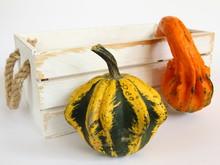 Kolorowe Dynie Ozdobne Na Halloween Z Białą Skrzynią Na Jasnym Tle - Jesienna Dekoracja Do Nowoczesnego Wnętrza