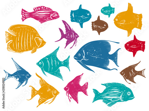 Set of Vector Drawings Different Ocean Fishes Canvas Print