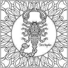 Scorpio. Decorative Zodiac Sig...
