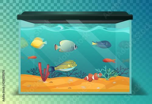 Glassware aquarium or fish tank, tropical fishes Wallpaper Mural