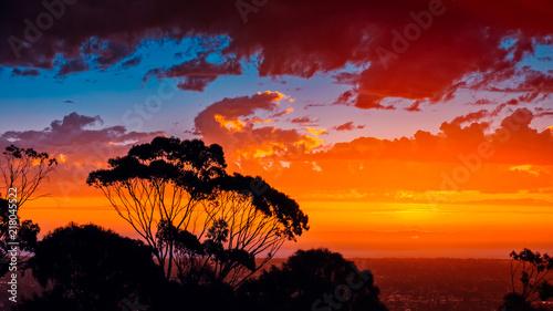 Poster Oceanië Iconic South Australian sunset