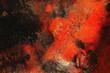 Feuer und Erde