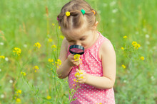 Young Girl Exploring Nature In The Meadow With A Magnifying Glass Looking At Flowers. Curious Children In The Woods, A Future Botanist.