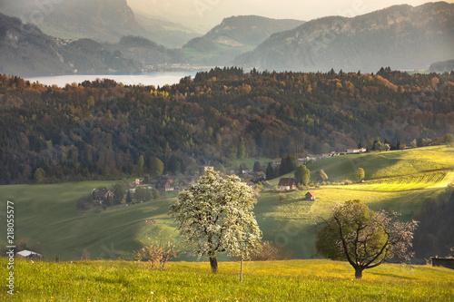 Spoed Foto op Canvas Khaki field view in switzerland