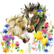 Cute Foal Watercolor Illustrat...