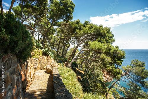 Round path from Cap Roig to Calella de Palafrugell, Costa Brava, Girona, Catalon Fototapet