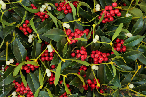 Winter berry holly and mistletoe background Canvas Print