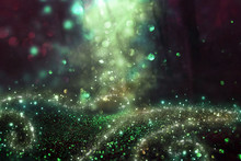 Abstract And Magical Image Of Glitter Firefly Flying In The Night Forest. Fairy Tale Concept.