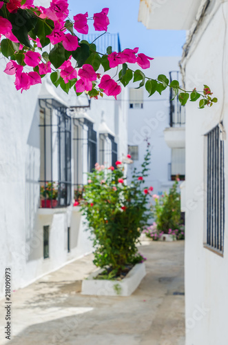 Canvas Print Bougainvillea in the streets of Vejer de la Frontera