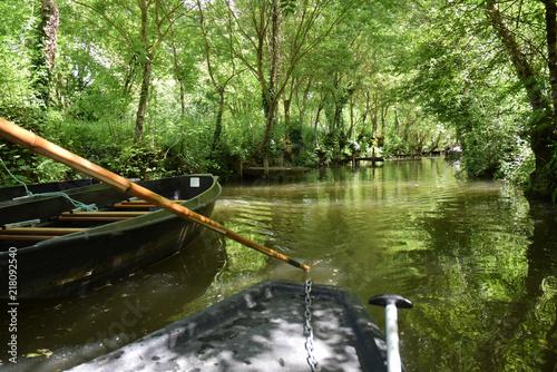 Fotografie, Obraz  Marais poitevin : promenade en barque sur les canaux à Maillezais, Vendée, Pays de la Loire