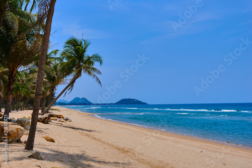 Landscape of paradise tropical island beach. Palm trees at tropical coast. Untouched tropical beach. Beautiful tropical golden sand beach and coconut palm trees. Holiday and vacation concept.