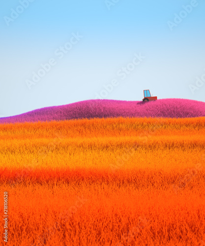 Spoed Foto op Canvas Baksteen Colorful hills