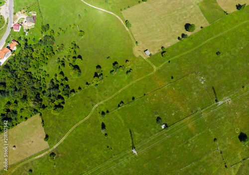 Spoed Foto op Canvas Groene road and green meadow. aerial view