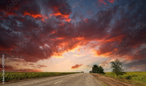 Poster Bordeaux Country asphalt road leaving into the dramatic sunset sky