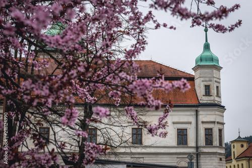 Castle in Vsetin town in historical Moravian region of Czech Republic Poster