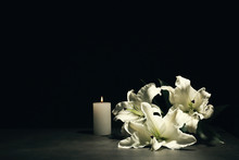 Beautiful Lilies And Burning C...