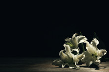 Beautiful Lilies On Dark Backg...