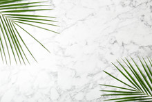 Fresh Tropical Date Palm Leaves On Marble Background, Top View