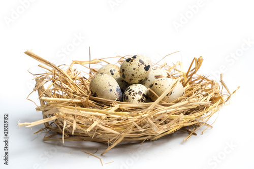 quail eggs in a nest isolated on white
