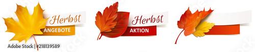Obraz Herbstblätter mit Papier Banner - Herbst Angebote, Herbst Aktion - fototapety do salonu