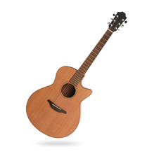Classic Acoustic Guitar Isolated