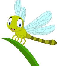 Cartoon Funny Dragonfly On Leaf