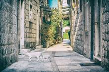 Narrow Street In Historic Trogir, Croatia, Analog Filter