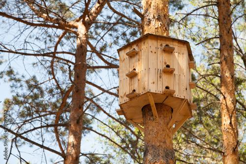 Fotografia Big birdhouse with many windows on a tree