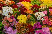 Various Colorful Flowers Are Sale In A Flower Shop On A Market