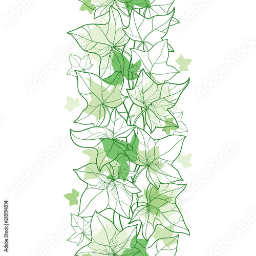 Canvas-taulu Vector vertical seamless pattern with outline Ivy or Hedera vines in pastel green on the white background