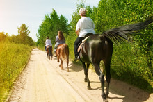 Horse Ride On A Summer Day. A ...