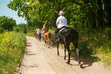 A Group Of Tourists On Horseback With An Instructor For A Walk.