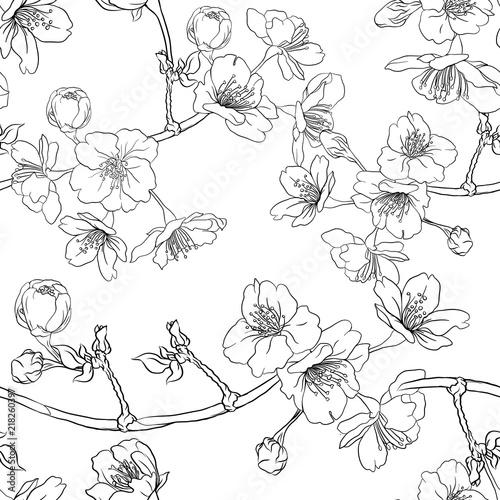 Tapety Japońskie  wzor-tlo-z-kwitnacych-wisni-japonskiej-sakura-stockowa-ilustracja-wektorowa-zarys-rysunku