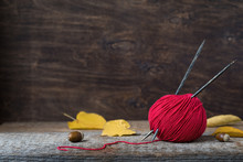 Bright Red Wool Yarn With Wooden Needles Among Leaves And Acorns, Autumn Knitting Postcard