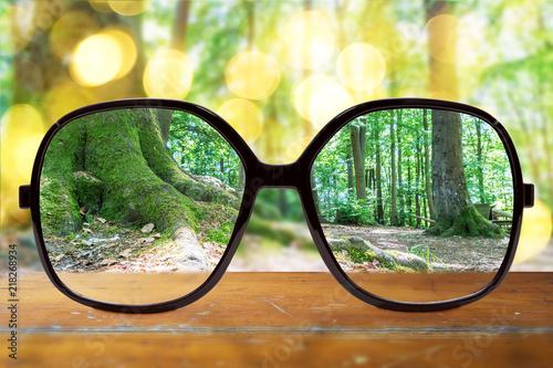 Keuken foto achterwand Zwavel geel Brille mit klarer Sicht im Wald