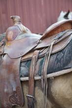 Close-up Of Saddle On Horse