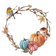 Watercolor Autumn Tree Branch, Bird And Pumpkin Wreath. Hand Painted Wreath With Robin, Mushroom And Leaves On White Background. Illustration For Design, Fabric Or Background.