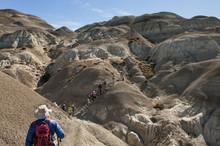 Hiking Through Petrified Forest;  La Leona;  Argentina;  Patagonia;  South America