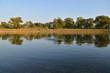 Donau Ufer